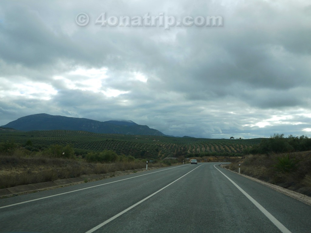 Driving through Spain's olive country